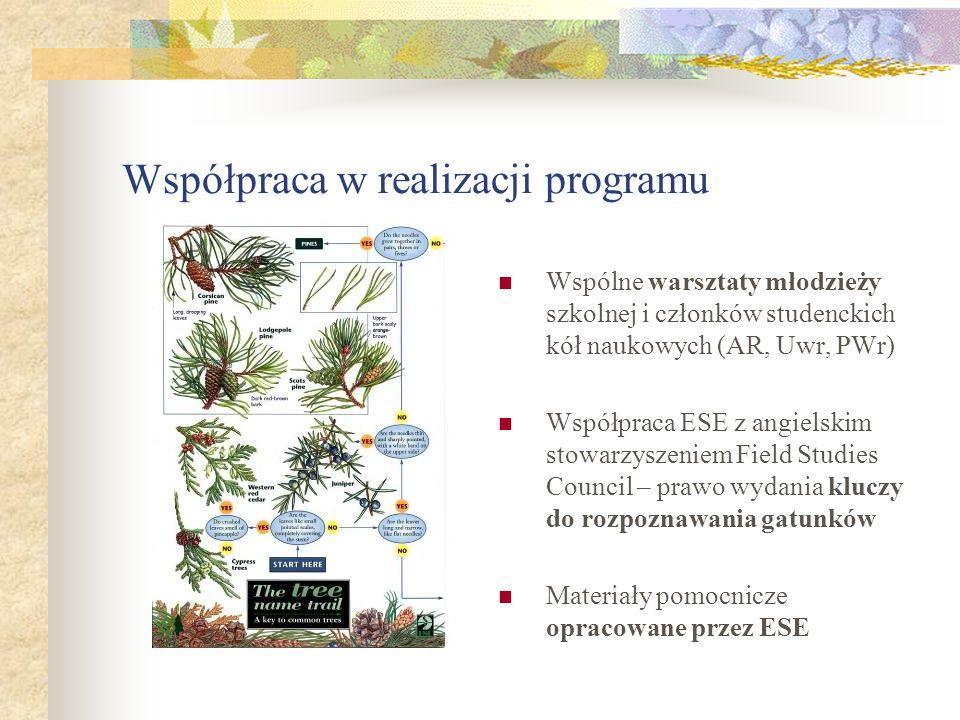 Współpraca w realizacji programu