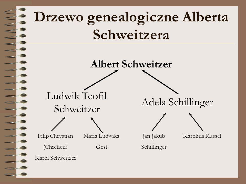 Drzewo genealogiczne Alberta Schweitzera