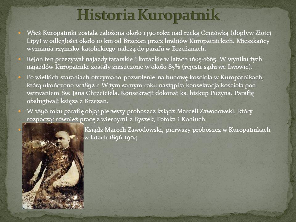 Historia Kuropatnik