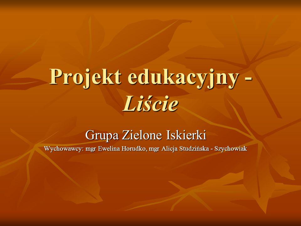 Projekt edukacyjny - Liście
