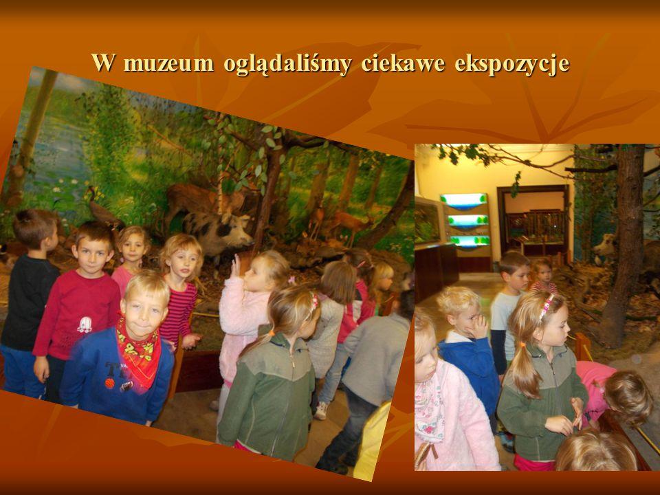 W muzeum oglądaliśmy ciekawe ekspozycje
