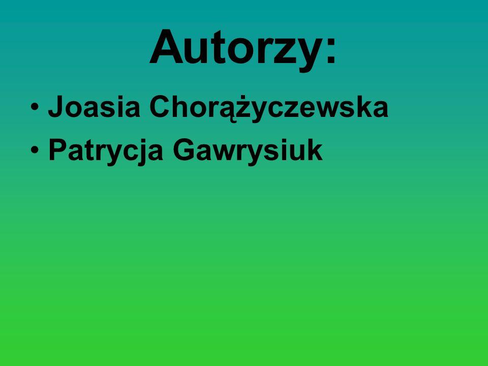 Autorzy: Joasia Chorążyczewska Patrycja Gawrysiuk