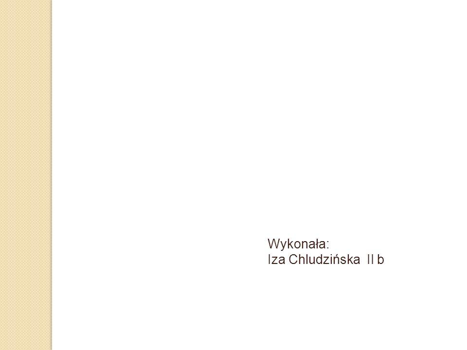 Wykonała: Iza Chludzińska II b
