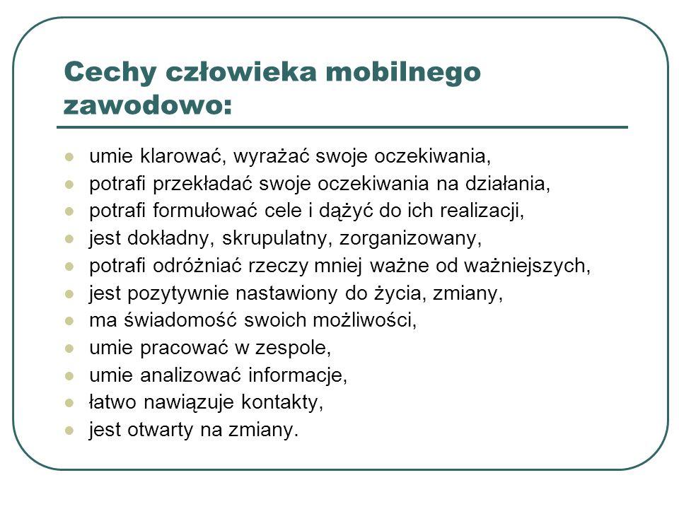 Cechy człowieka mobilnego zawodowo: