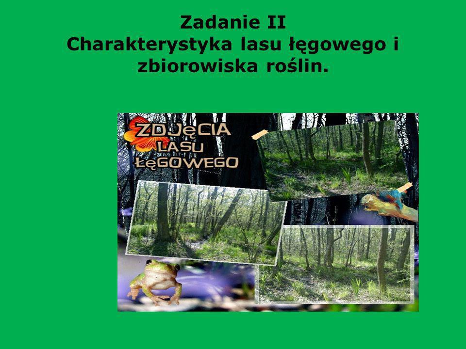 Zadanie II Charakterystyka lasu łęgowego i zbiorowiska roślin.