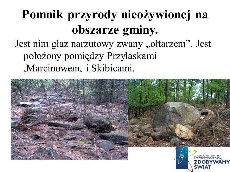 Pomnik przyrody nieożywionej na obszarze gminy.