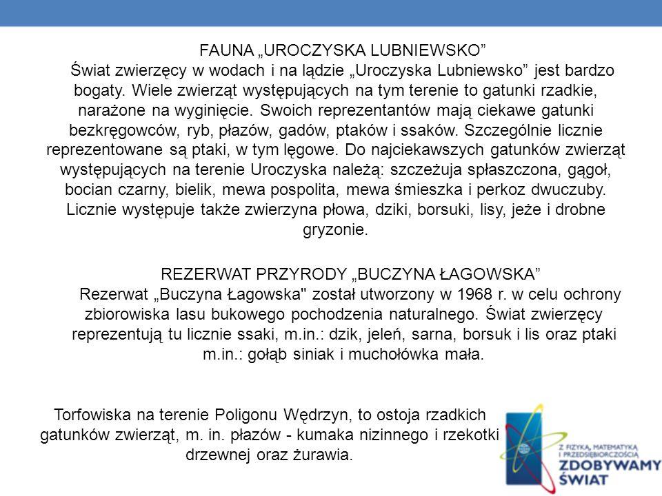 """FAUNA """"UROCZYSKA LUBNIEWSKO"""