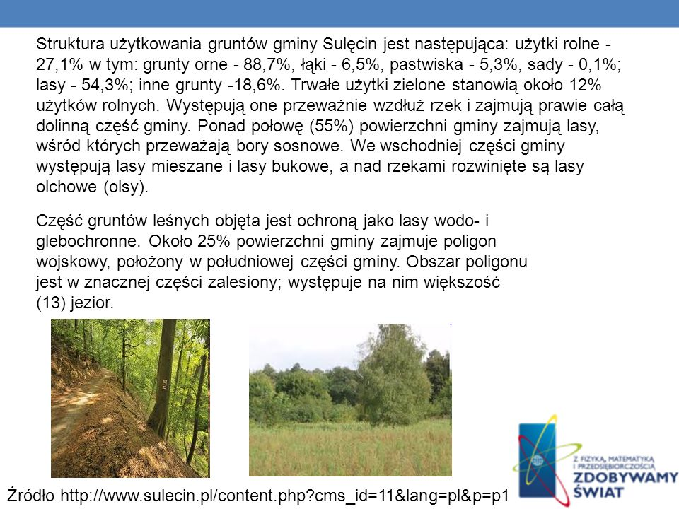 Struktura użytkowania gruntów gminy Sulęcin jest następująca: użytki rolne - 27,1% w tym: grunty orne - 88,7%, łąki - 6,5%, pastwiska - 5,3%, sady - 0,1%; lasy - 54,3%; inne grunty -18,6%. Trwałe użytki zielone stanowią około 12% użytków rolnych. Występują one przeważnie wzdłuż rzek i zajmują prawie całą dolinną część gminy. Ponad połowę (55%) powierzchni gminy zajmują lasy, wśród których przeważają bory sosnowe. We wschodniej części gminy występują lasy mieszane i lasy bukowe, a nad rzekami rozwinięte są lasy olchowe (olsy).