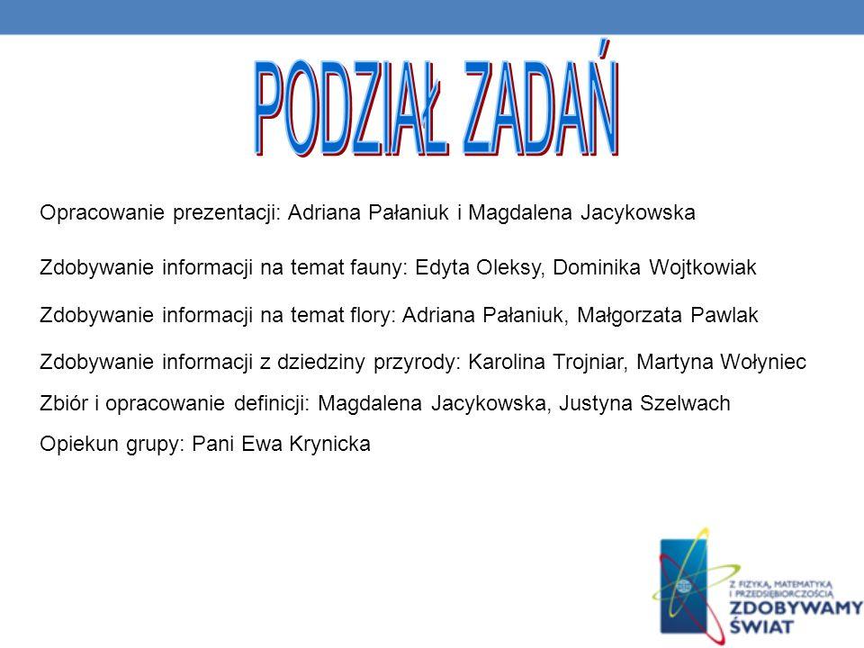 PODZIAŁ ZADAŃ Opracowanie prezentacji: Adriana Pałaniuk i Magdalena Jacykowska.