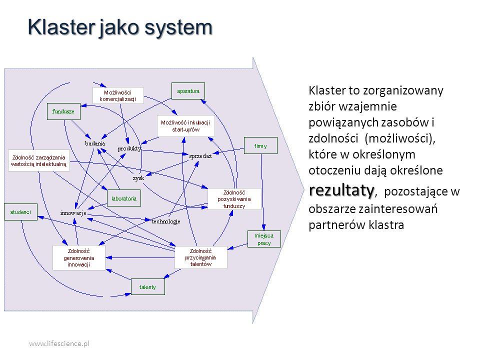 Klaster jako system