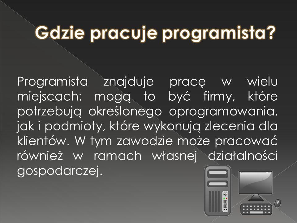 Gdzie pracuje programista