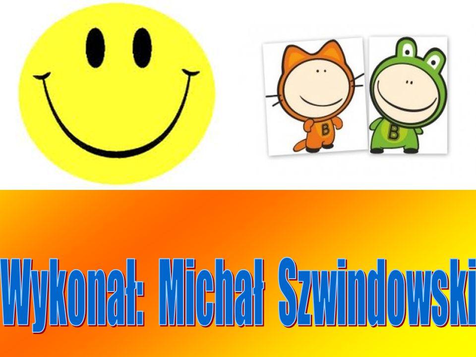 Wykonał: Michał Szwindowski