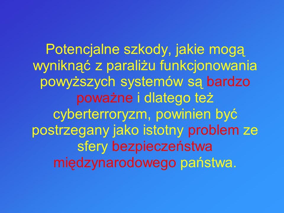 Potencjalne szkody, jakie mogą wyniknąć z paraliżu funkcjonowania powyższych systemów są bardzo poważne i dlatego też cyberterroryzm, powinien być postrzegany jako istotny problem ze sfery bezpieczeństwa międzynarodowego państwa.