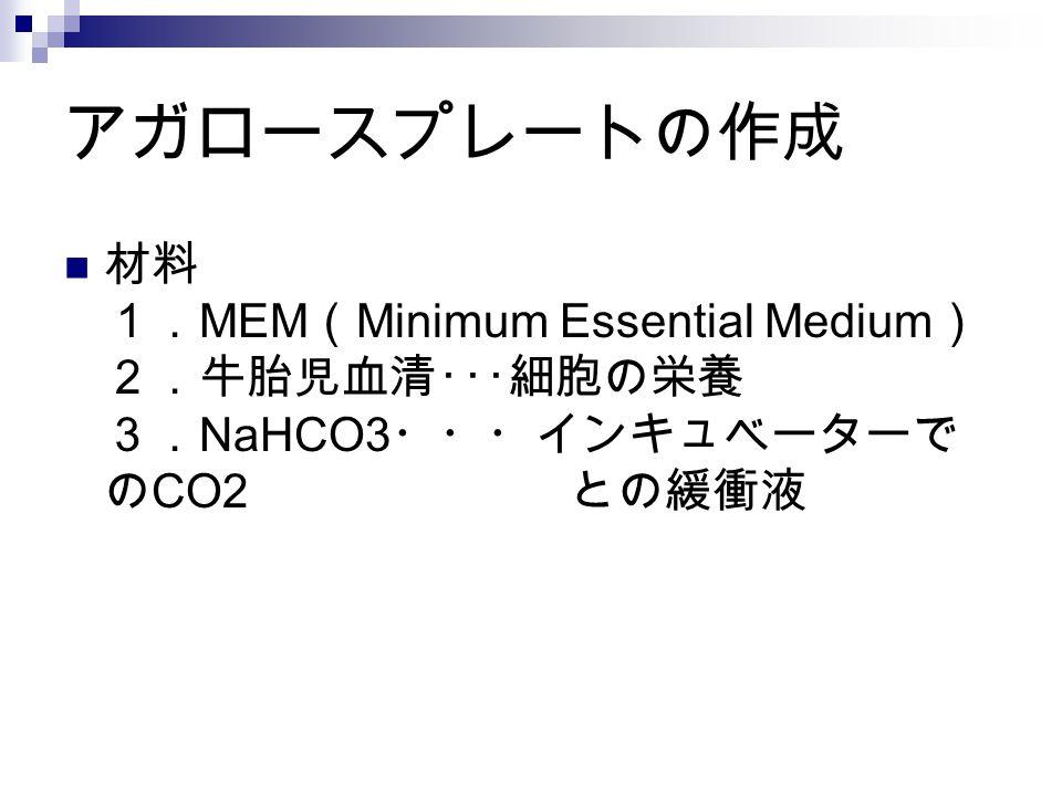 アガロースプレートの作成 材料 1.MEM(Minimum Essential Medium) 2.牛胎児血清・・・細胞の栄養 3.NaHCO3・・・インキュベーターでのCO2 との緩衝液