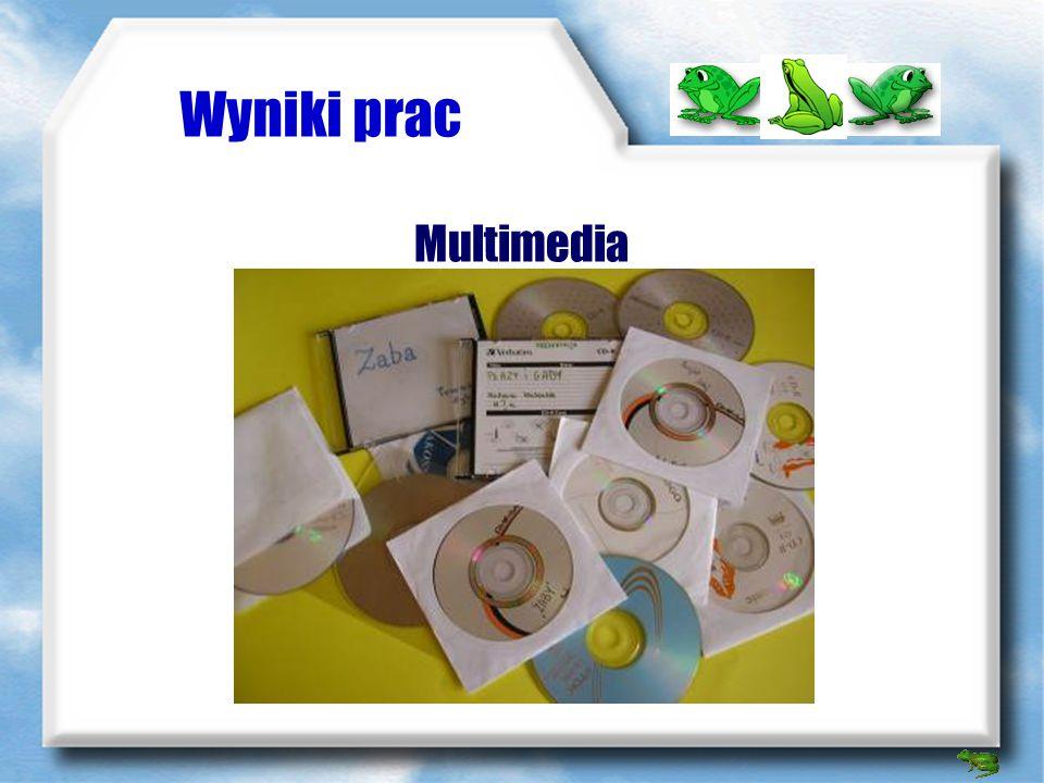 Wyniki prac Multimedia