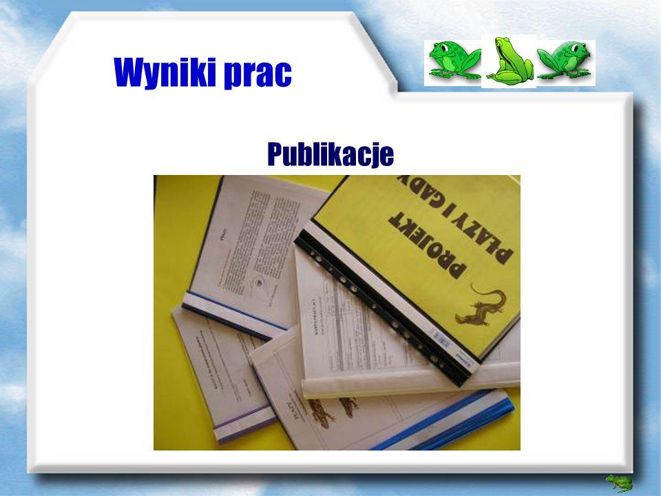 Wyniki prac Publikacje