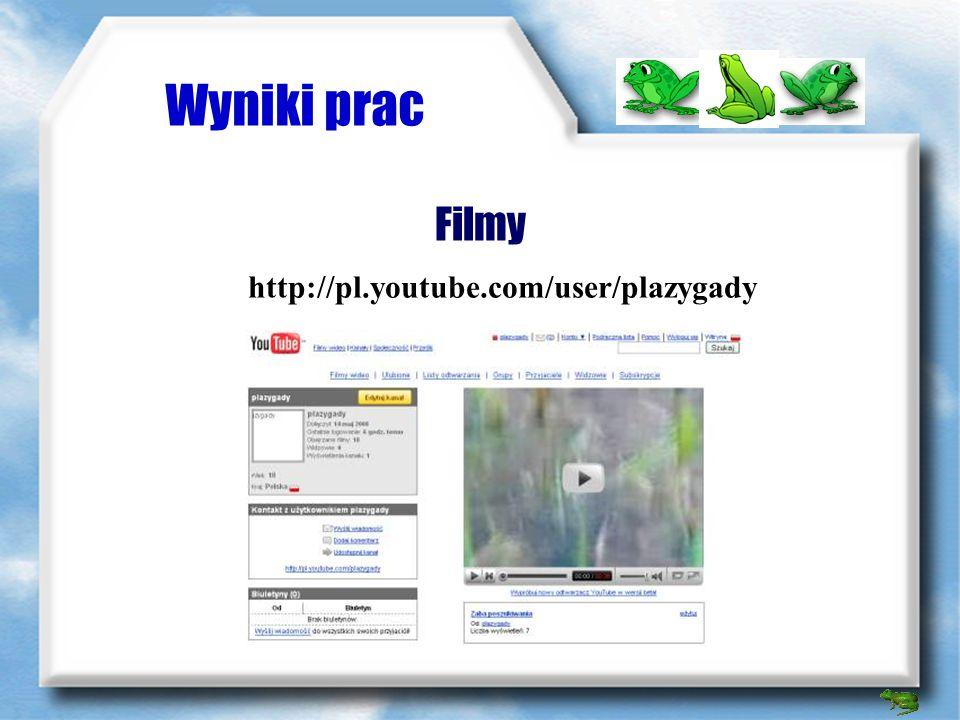 Wyniki prac Filmy http://pl.youtube.com/user/plazygady