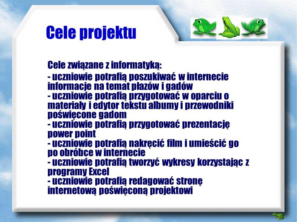 Cele projektu Cele związane z informatyką: