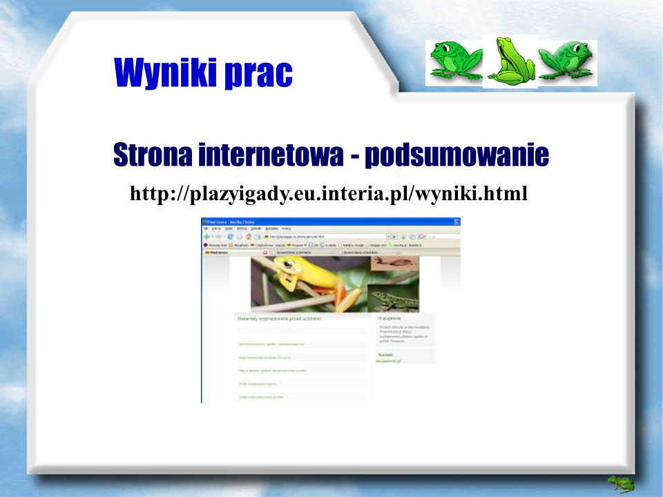 Strona internetowa - podsumowanie
