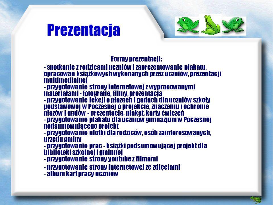 Prezentacja Formy prezentacji: