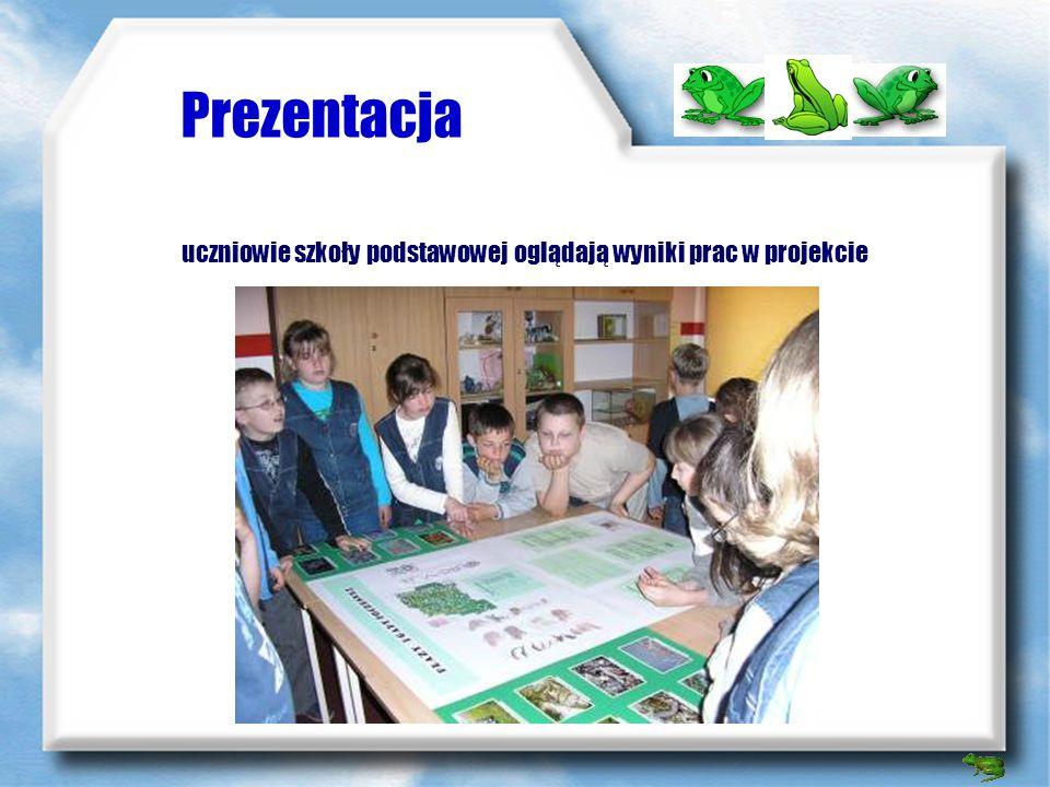 uczniowie szkoły podstawowej oglądają wyniki prac w projekcie