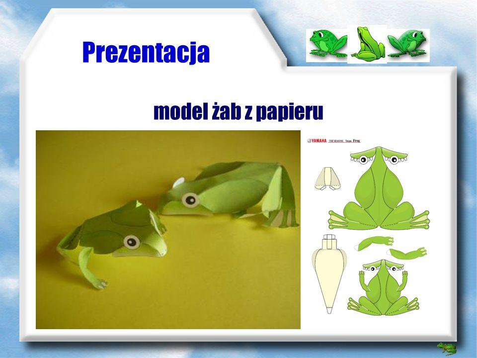Prezentacja model żab z papieru