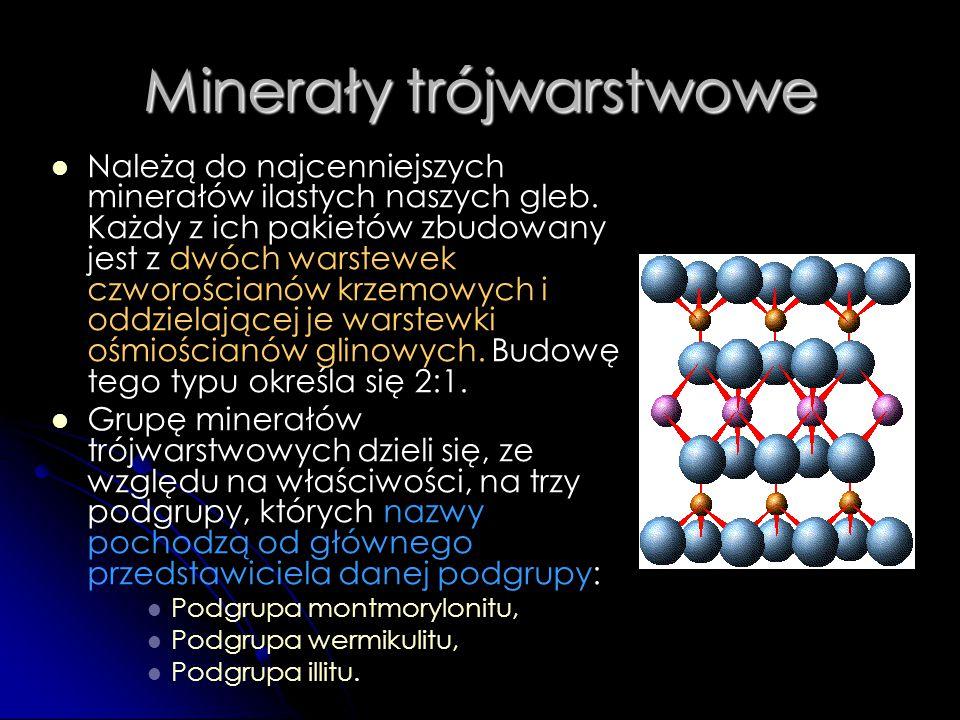 Minerały trójwarstwowe
