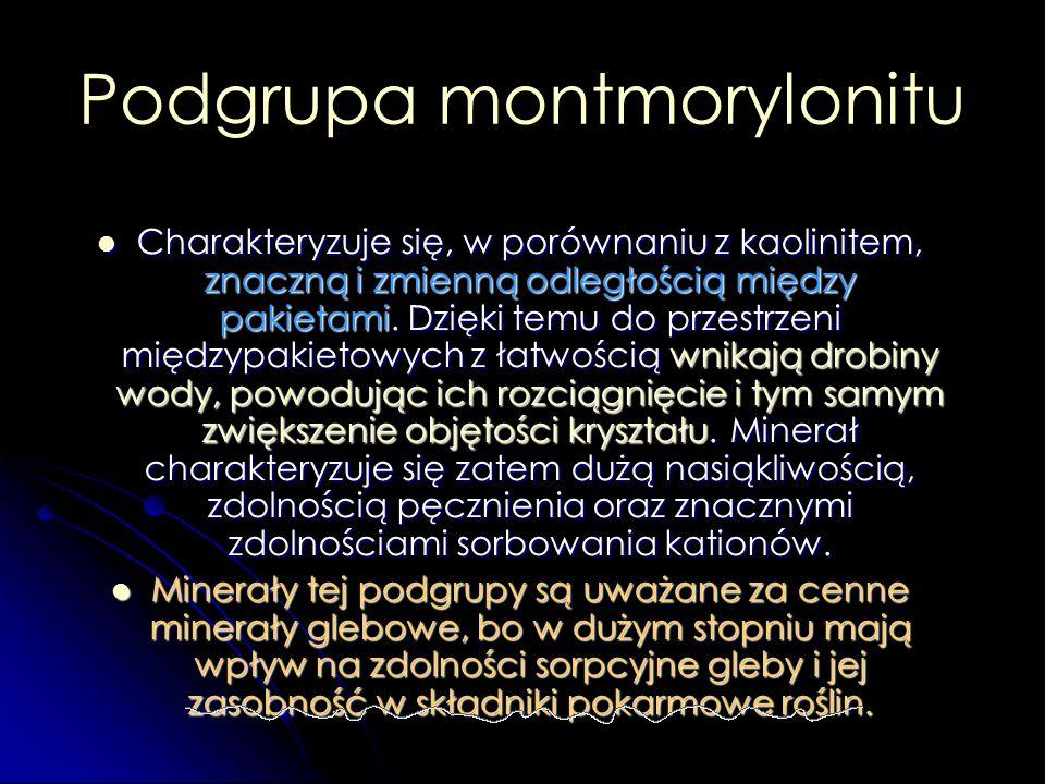 Podgrupa montmorylonitu