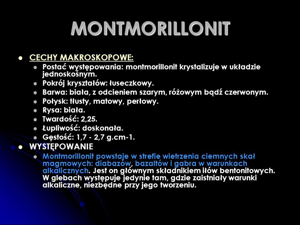 MONTMORILLONIT CECHY MAKROSKOPOWE: WYSTĘPOWANIE