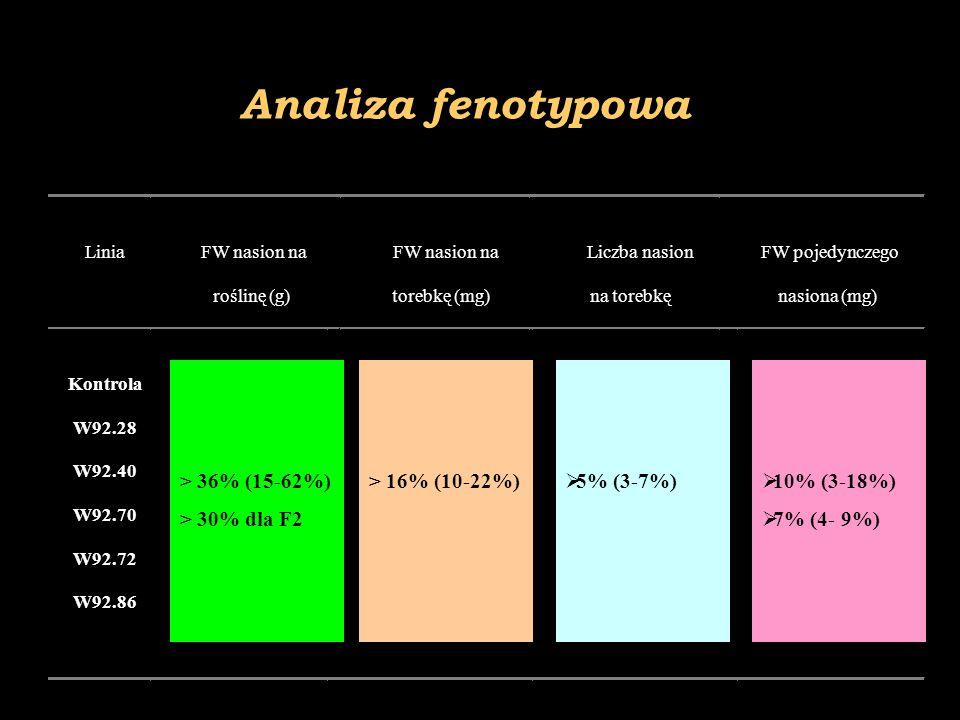 Analiza fenotypowa > 36% (15-62%) > 30% dla F2 > 16% (10-22%)