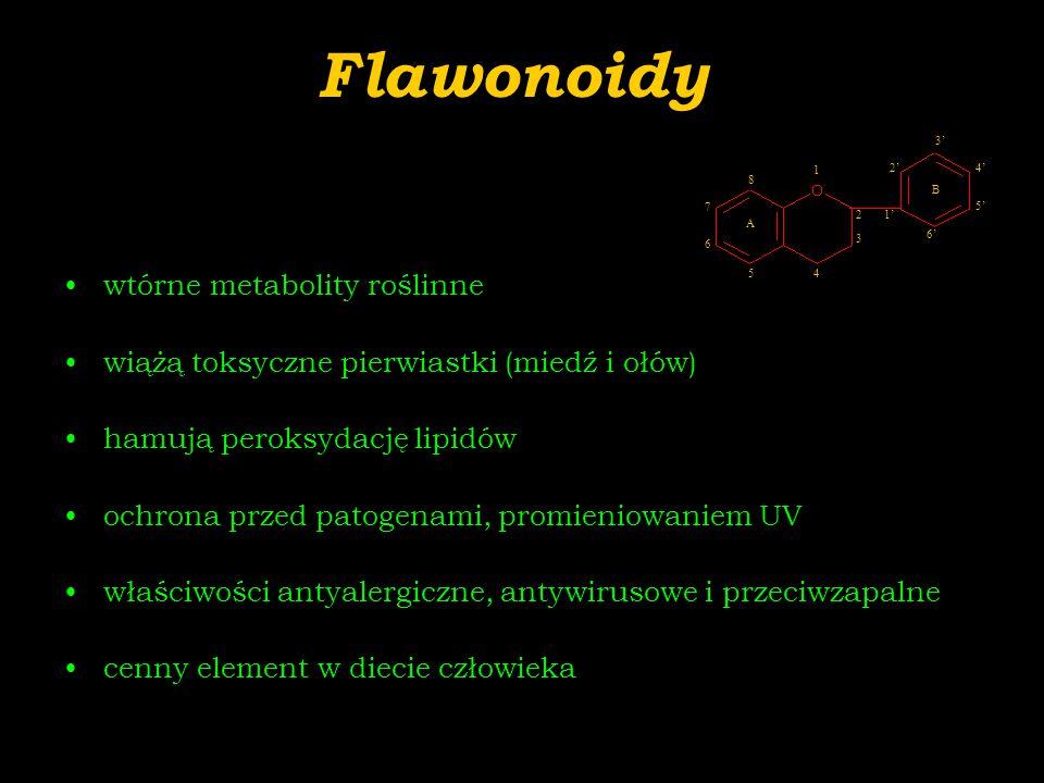 Flawonoidy wtórne metabolity roślinne