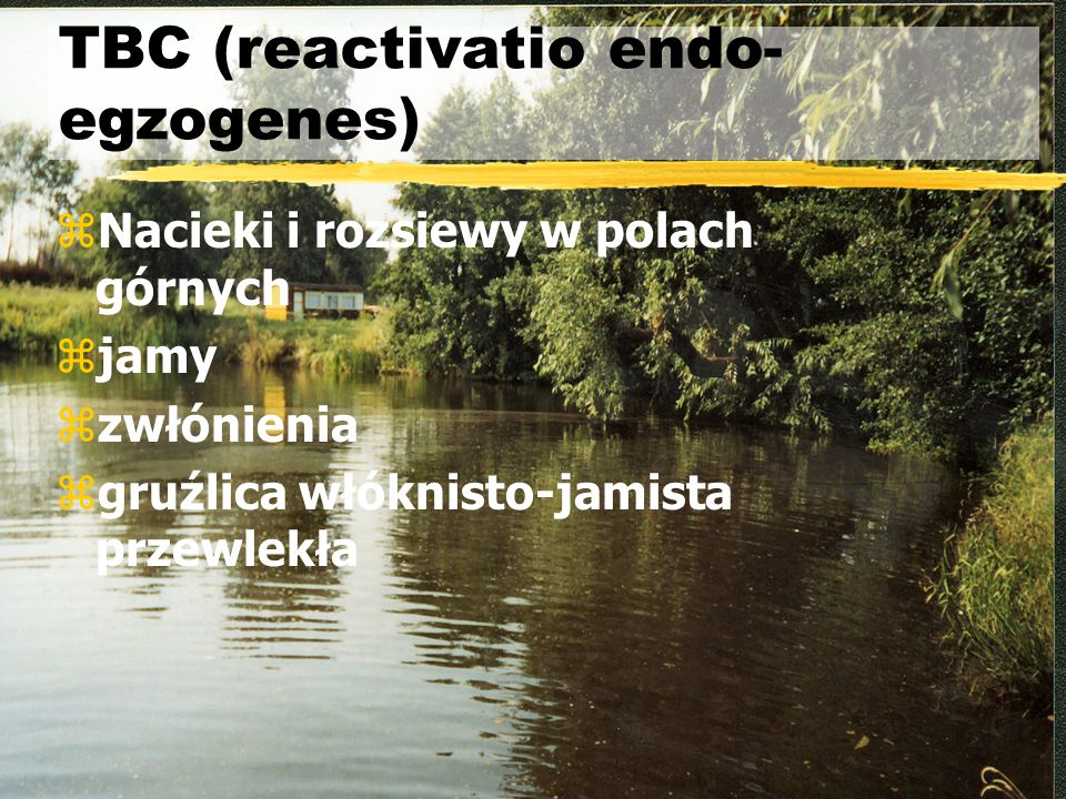 TBC (reactivatio endo- egzogenes)