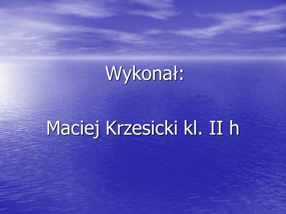 Maciej Krzesicki kl. II h