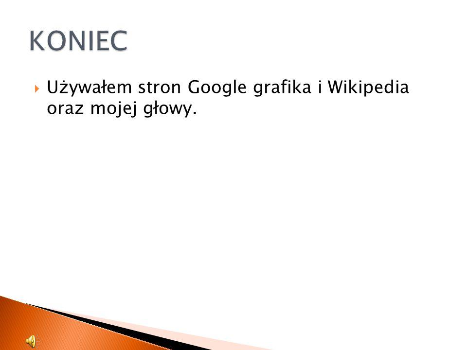 KONIEC Używałem stron Google grafika i Wikipedia oraz mojej głowy.