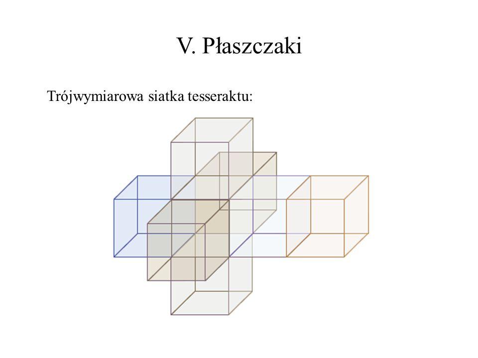 V. Płaszczaki Trójwymiarowa siatka tesseraktu: