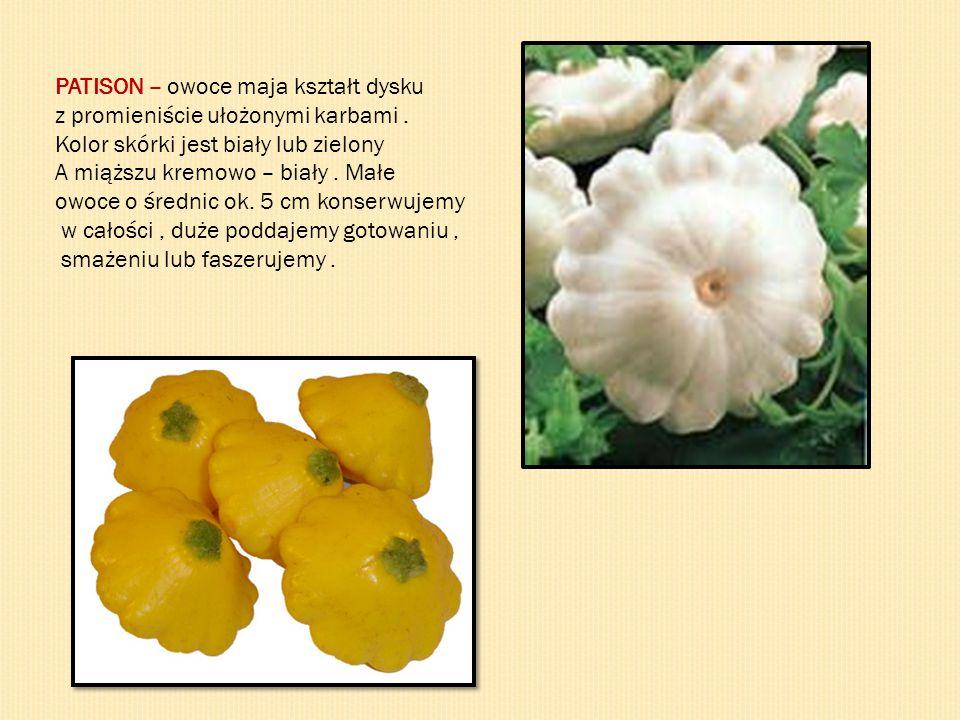 PATISON – owoce maja kształt dysku