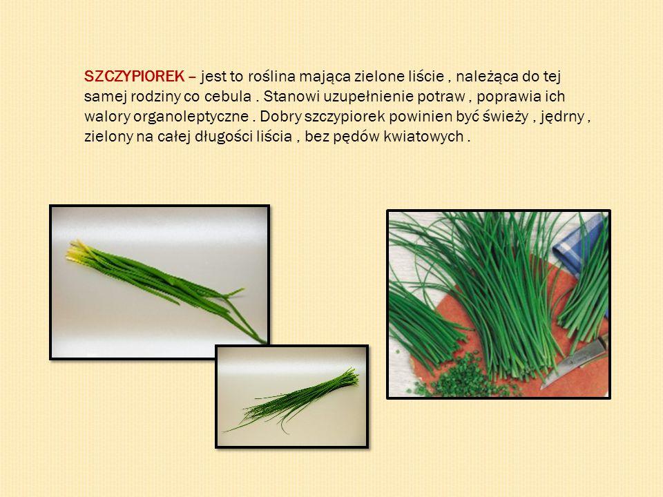 SZCZYPIOREK – jest to roślina mająca zielone liście , należąca do tej samej rodziny co cebula .