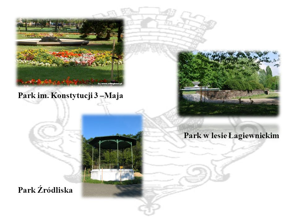 Park im. Konstytucji 3 –Maja Park w lesie Łagiewnickim Park Źródliska