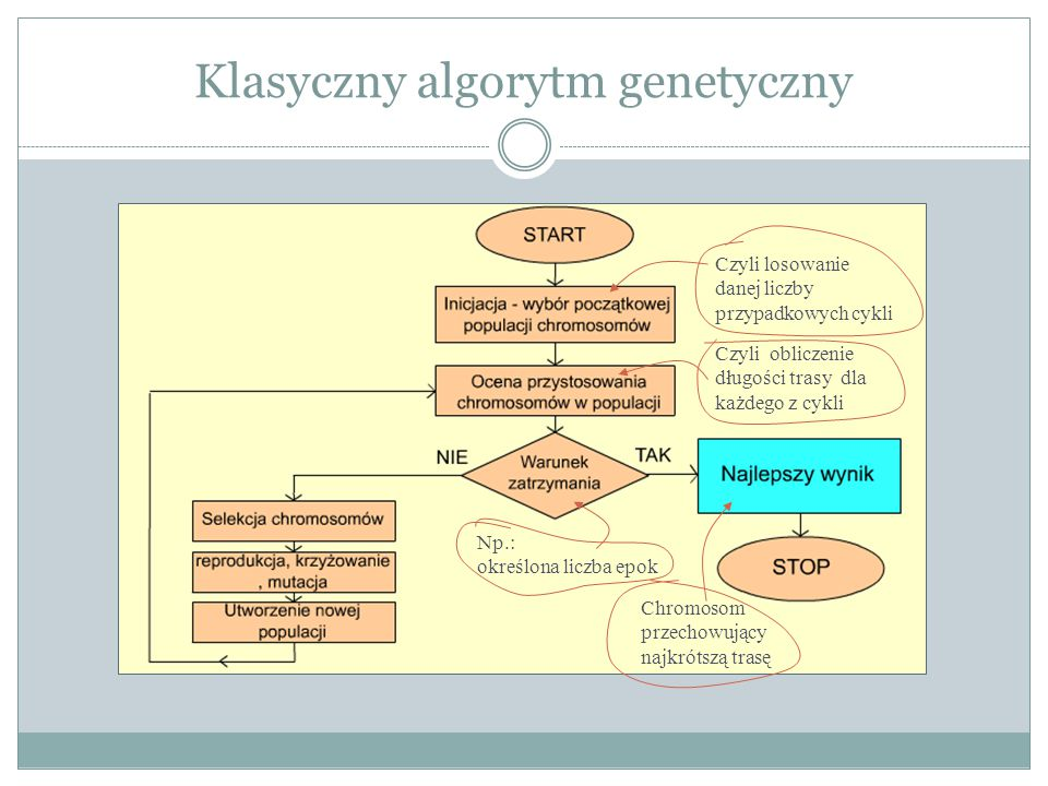 Klasyczny algorytm genetyczny