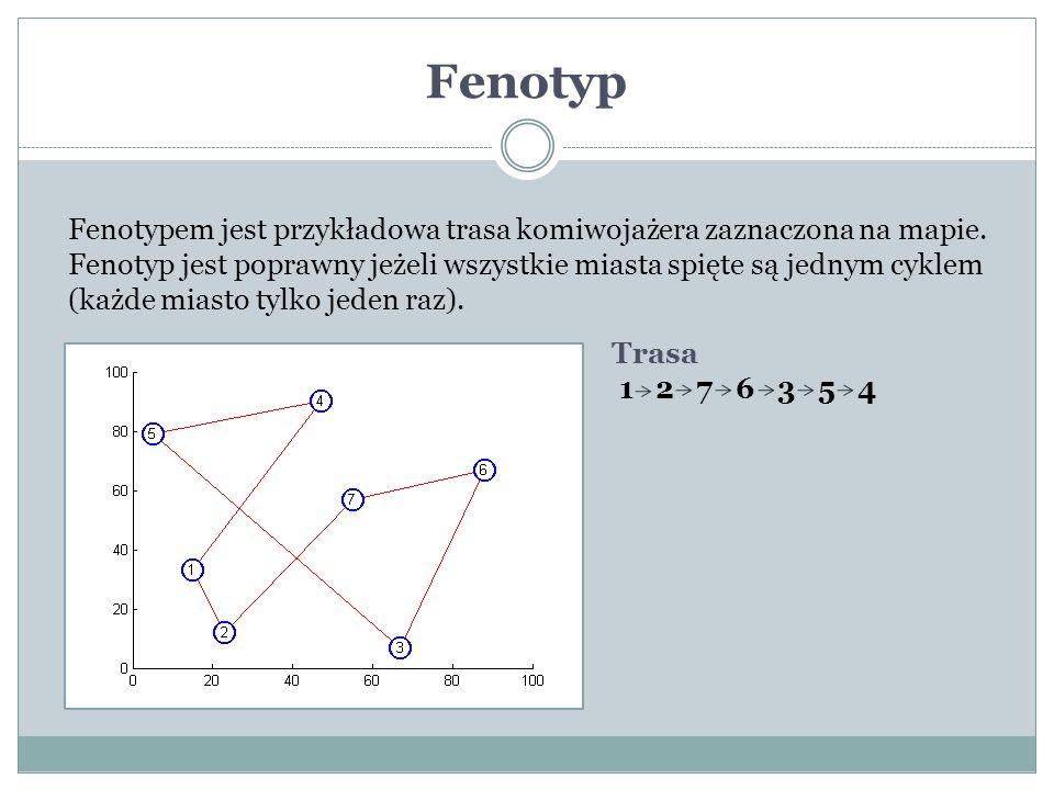 Fenotyp Fenotypem jest przykładowa trasa komiwojażera zaznaczona na mapie. Fenotyp jest poprawny jeżeli wszystkie miasta spięte są jednym cyklem.
