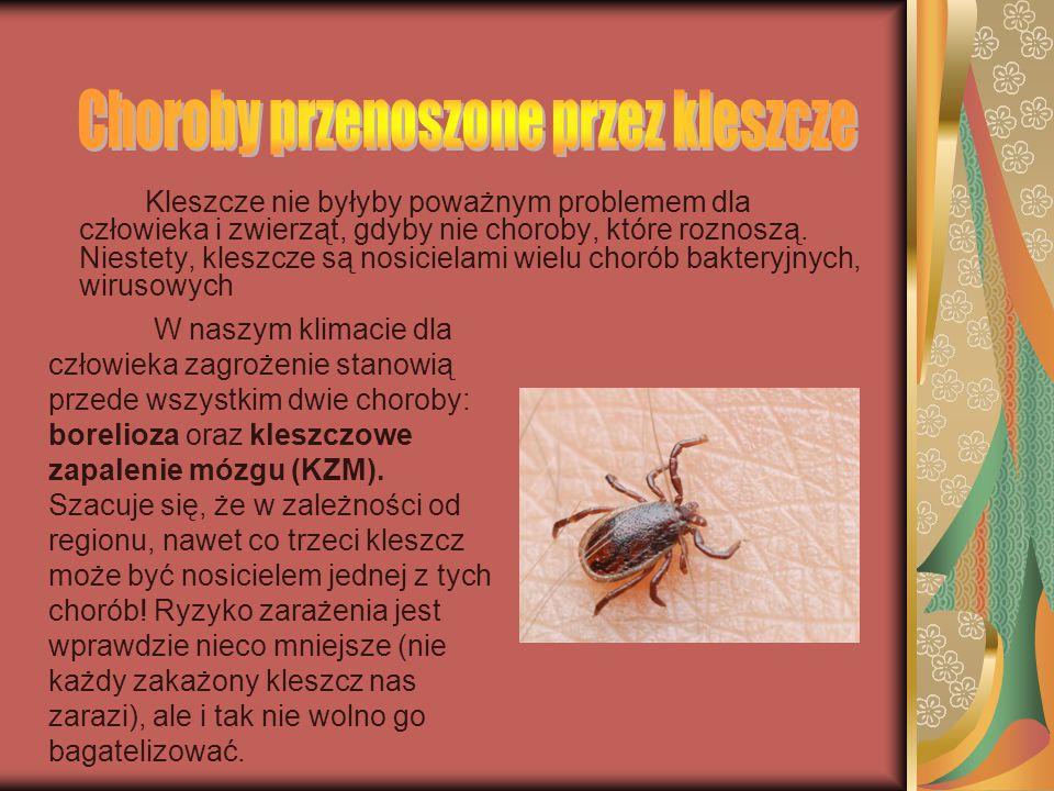 Choroby przenoszone przez kleszcze