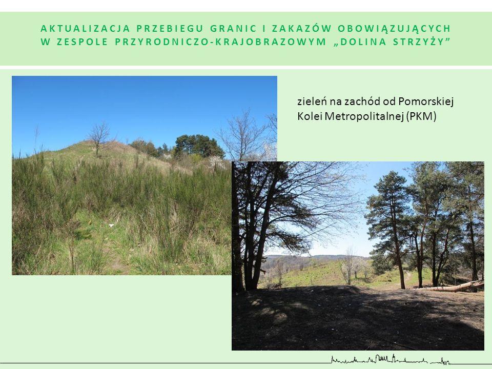 zieleń na zachód od Pomorskiej Kolei Metropolitalnej (PKM)