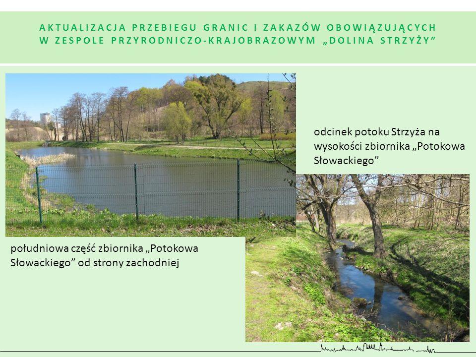 """odcinek potoku Strzyża na wysokości zbiornika """"Potokowa Słowackiego"""