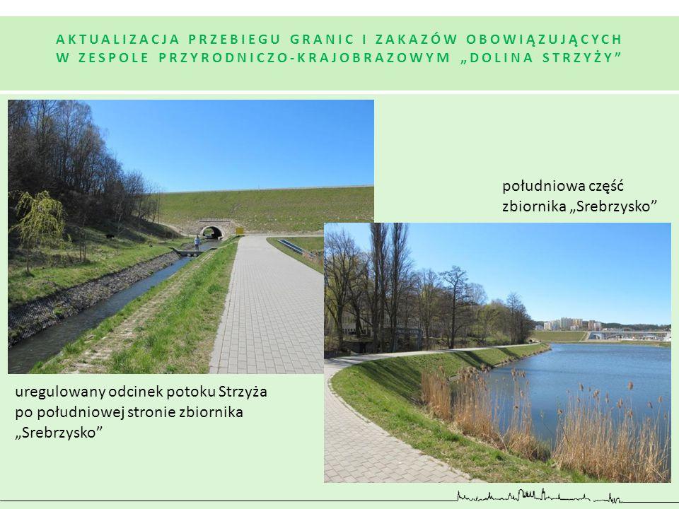 """południowa część zbiornika """"Srebrzysko"""