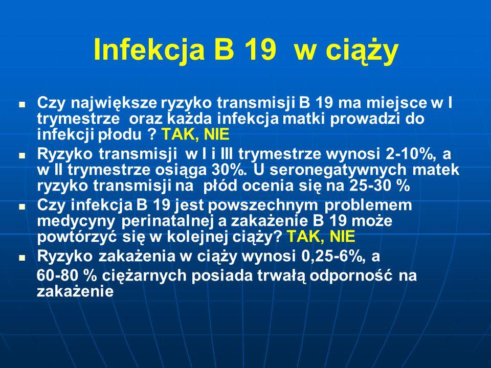 Infekcja B 19 w ciąży