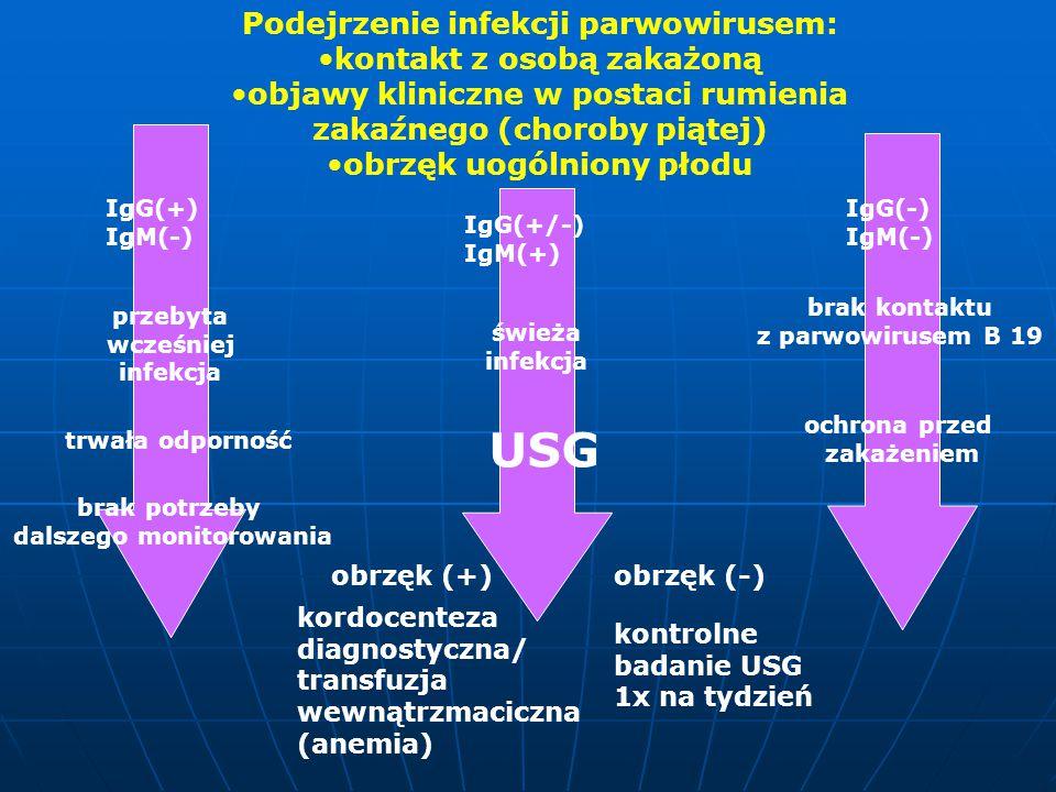 USG Podejrzenie infekcji parwowirusem: kontakt z osobą zakażoną