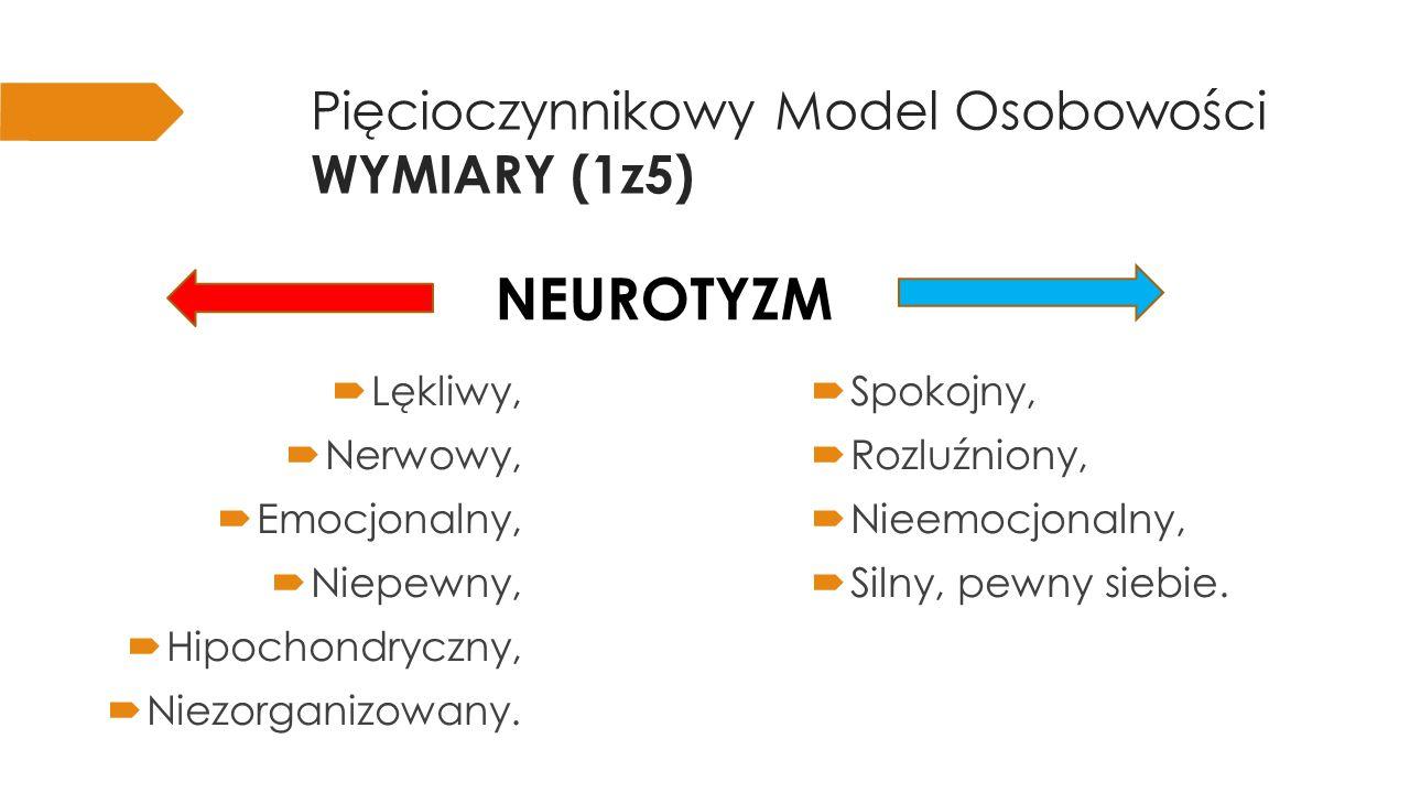 Pięcioczynnikowy Model Osobowości WYMIARY (1z5)