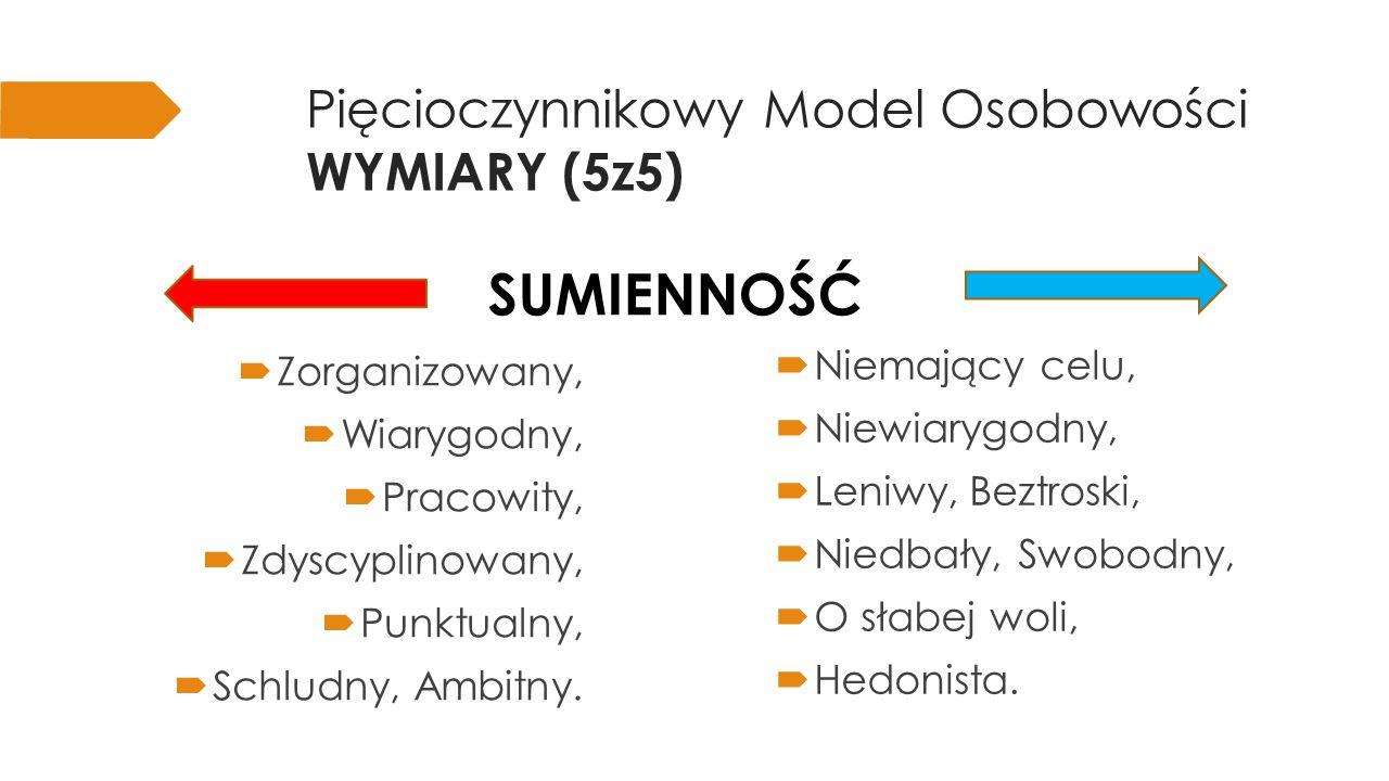 Pięcioczynnikowy Model Osobowości WYMIARY (5z5)