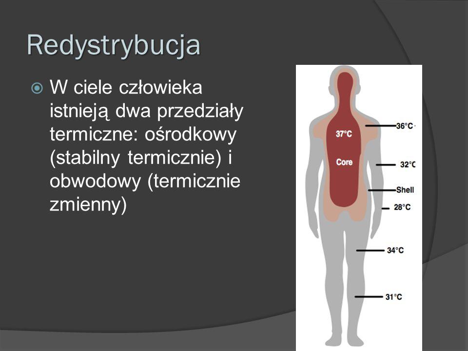 Redystrybucja W ciele człowieka istnieją dwa przedziały termiczne: ośrodkowy (stabilny termicznie) i obwodowy (termicznie zmienny)