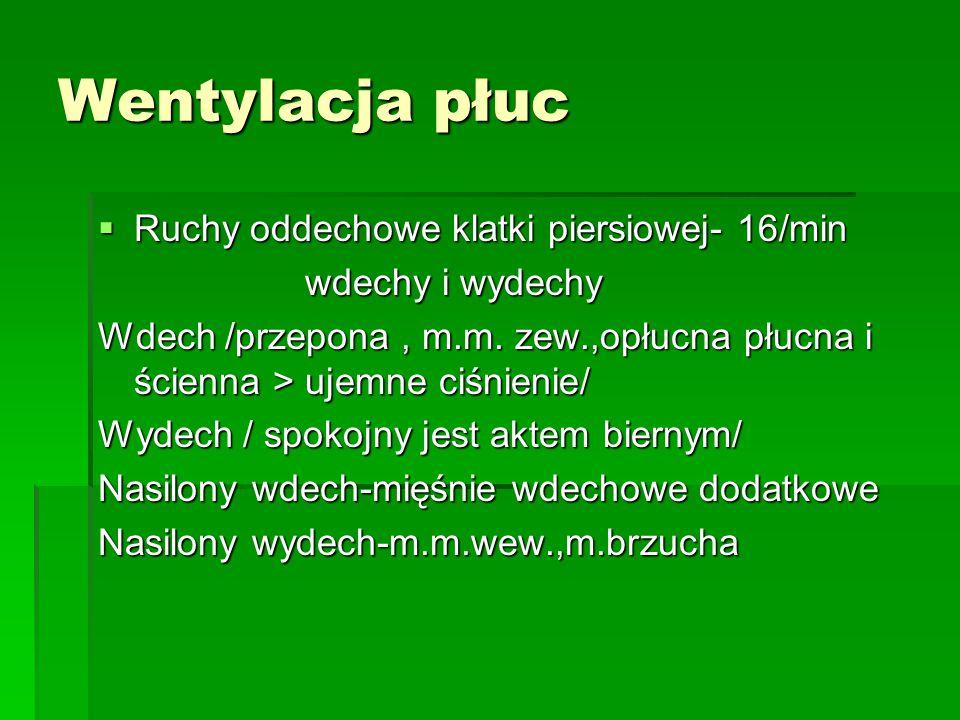 Wentylacja płuc Ruchy oddechowe klatki piersiowej- 16/min